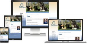 Hundetrainer Coaching Webdesign